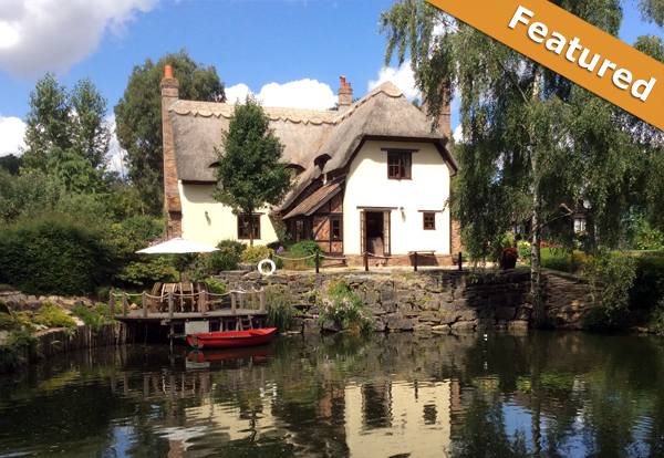 kingfisher retreat thatched cottage bed and breakfast