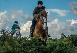 New forest Pony Riding, by Matt Roseveare